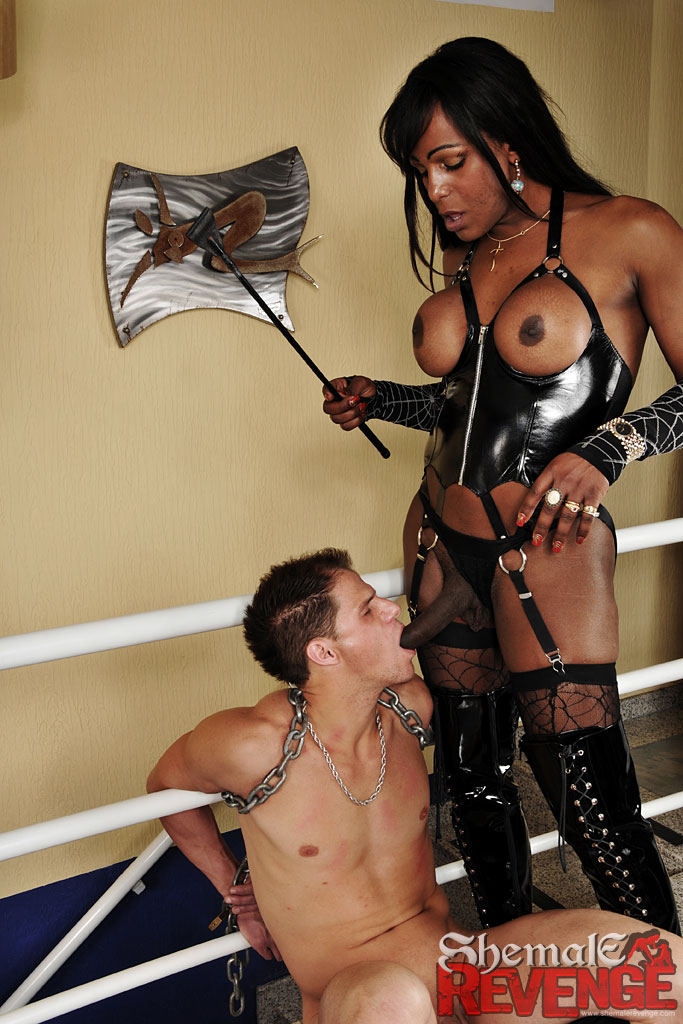 travesti nu maitresse domina paris