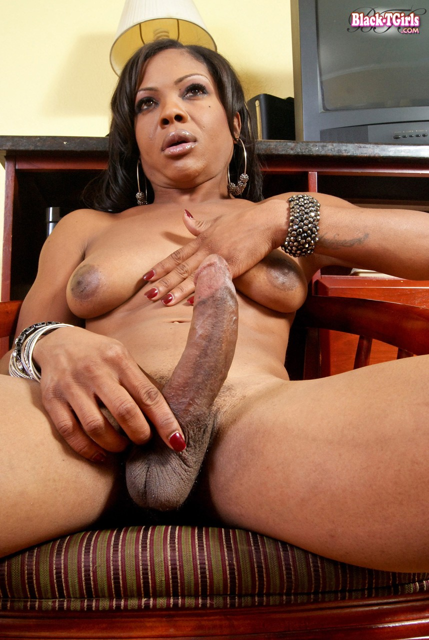 antonio milan the porn star