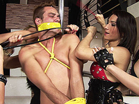 Dominant shemales in extreme fetish action