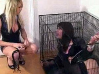 Horny Zoe gets locked in a cage and teased by a TGirl