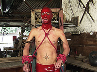 Gimp in red latex is forced to suck many shemale cocks