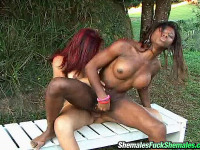 Rochele & Marcela - Chocolate and white shemales ideally match for outdoor fucking on the bench